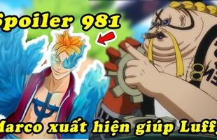 Spoiler One Piece chapt 981: Marco xuất hiện chặn đánh băng Big Mom, Chopper chạm mặt Tứ Hoàng