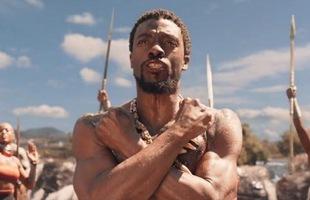 Khâm phục chàng sinh viên mang Black Panther và Wakanda vào bài thuyết trình của mình