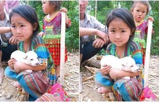 Bé gái vùng cao giữ chặt chú chó nhỏ không bán khiến dân mạng thương cảm