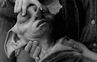Sống lại 5 khoảnh khắc đau đớn, tang thương nhất của Harry Potter