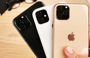 iPhone 11 có giá dự kiến tới 44 triệu đồng tại Việt Nam
