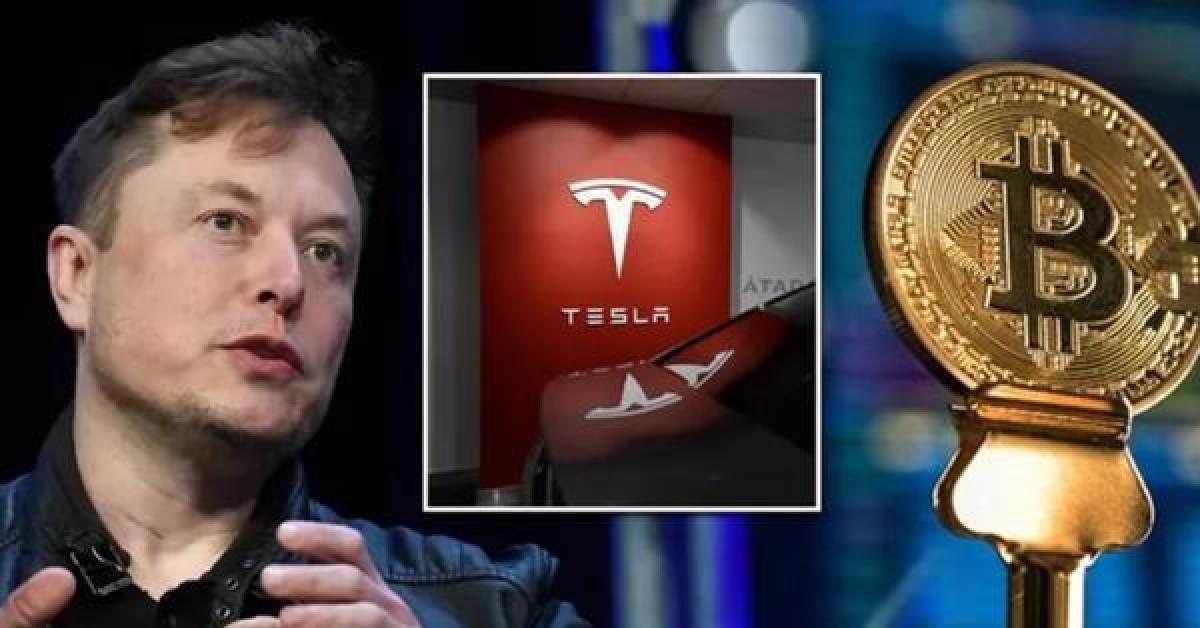"""Sự """"mong manh"""" của tiền ảo: Elon Musk vừa đăng bài, chỉ 45 phút sau Bitcoin rớt giá mạnh"""