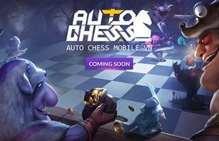 HOT: Auto Chess Mobile chuẩn bị được một đại gia làng game phát hành tại Việt Nam?