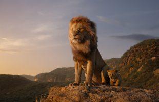[Đánh giá] Vua Sư Tử 2019: Mãn nhãn, hài hước nhưng không mới mẻ về nội dung