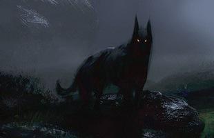 Chó ma Anh quốc: Loài vật bí ẩn và những minh chứng về sự tồn tại của chúng