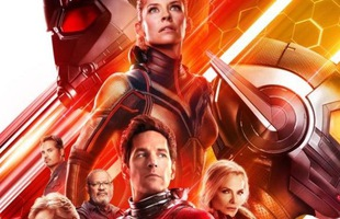 Người Kiến Và Chiến Binh Ong: Siêu phẩm tiếp theo của Marvel liên tục đứng đầu bảng doanh thu phòng vé