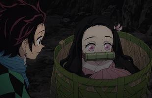 Kimetsu no Yaiba: Nezuko là một con quỷ đặc biệt như thế nào?