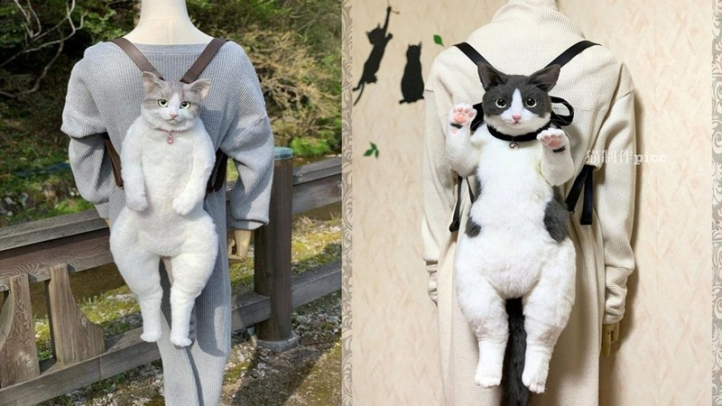 Dân mạng khiếp đảm với sở thích balo mèo như thật của cộng đồng Otaku