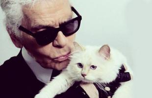 """Mèo cưng của Karl Lagerfeld sẽ kế thừa khối tài sản 4.600 tỷ đồng, trở thành """"mèo tỷ phú"""" của thế giới?"""