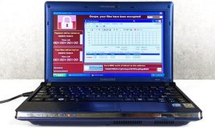 Đây là chiếc laptop có giá lên tới 1 triệu USD vì bị nhiễm 6 virus nguy hiểm nhất thế giới cùng lúc