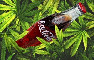 Nước giải khát Coca-Cola quen thuộc với game thủ sẽ có phiên bản chứa cần sa?