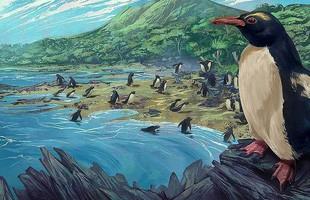 Chim cánh cụt cổ đại cao bằng người từng sống ở lục địa