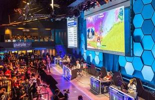 Vì sao Fortnite được công nhận là eSports còn PUBG lại không?