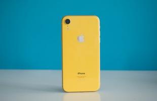 iPhone XR là chiếc iPhone bán chạy nhất lịch sử Apple, nhưng con số chính xác không được công bố